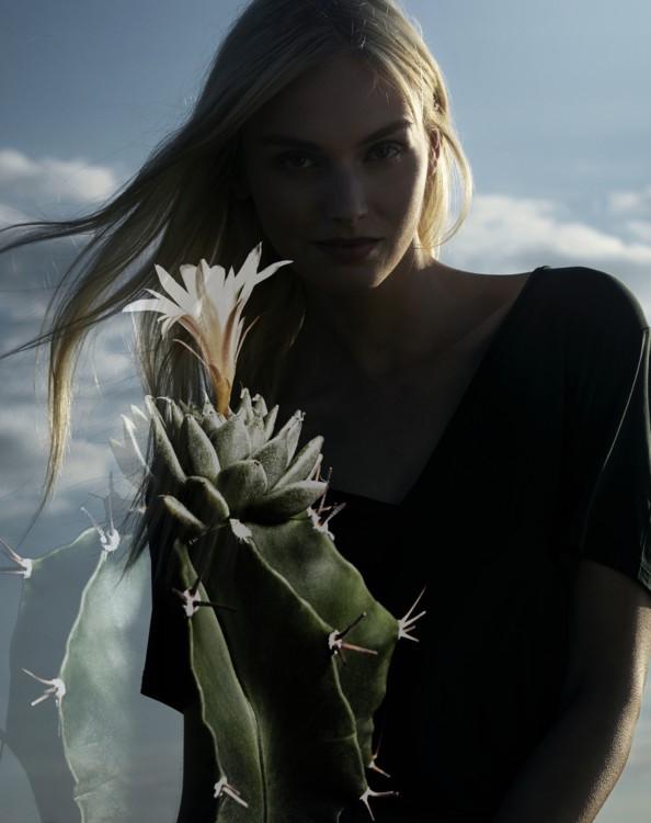 CARTIER CACTUS / PHOTOGRAPHER JEAN BERNARD THIELE